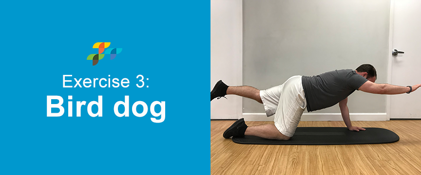 bird-dog-abs-exercise
